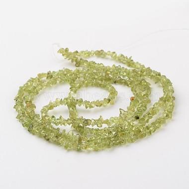 Chip Natural Peridot Bead Strands(G-M350-09)-2