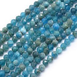 perles naturelles apatite brins, facettes, arrondir, 4 mm, trou: 1 mm; environ 95 perle / brin, 15.35 (39 cm)(G-E411-36-4mm)