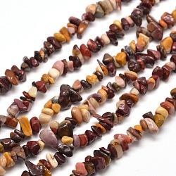"""Mookaite naturelle brins puce de perles, 5~8x5~8mm, trou: 1 mm; environ 31.5""""(G-M205-39)"""
