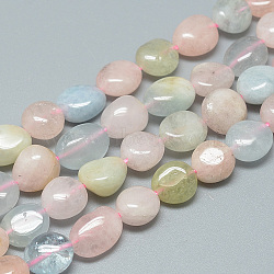 Chapelets de perles en morganite naturelle, nuggets, 8~12x8~10x3~9mm, trou: 1mm; environ 42 pcs/chapelet, 16.3''(X-G-S264-03)