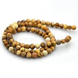 """Rondes image naturelle perles de jaspe brins, 10mm, trou: 1mm; environ 38 pcs/chapelet, 14.9""""(G-N0120-24-10mm)"""