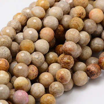 Faceted Round Natural Fossil Coral Bead Strands, 10mm, Hole: 1mm, about 40pcs/strand, 15.3 inches(G-L437-03-10mm)
