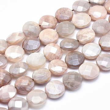 14mm Flat Round Moonstone Beads