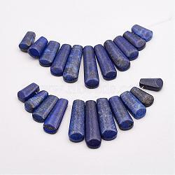 lapis-lazuli naturel, éventail de perles en éventail, 16~39x9.5~10x5 mm, trou: 1 mm; 11 perle / Chapelet, 3.27(G-P298-I01)