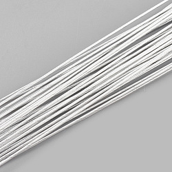 Iron Wire, Floral Wire,  for Florist Flower Arrangement, Bouquet Stem Warpping and DIY Craft, WhiteSmoke, 24 Gauge, 0.5mm; 40cm/strand; 100strand/bag(MW-S002-03F-0.5mm)