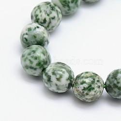 """Chapelets de perles en jaspe à pois verts naturels, rond, facette, 6mm, trou: 1mm; environ 63 pcs/chapelet, 15.5""""(G-L148-6mm-01)"""