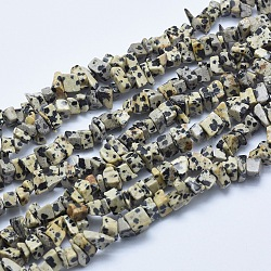"""Chapelets de perles en zèbre naturel, puces, 6~10x2~5mm, Trou: 1mm; Environ 34.6"""" (88cm)(G-E446-27C)"""
