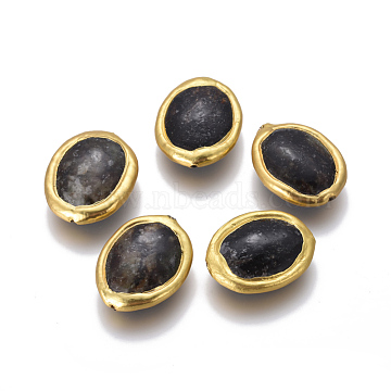 Natural Black Fossil Beads, with Golden Plated Brass Findings, Oval, 23~25x18~20x7~8mm, Hole: 0.8mm(G-F633-14B)