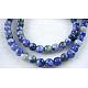 Natural Blue Spot Jasper Beads(X-GSR4mmC036)-1