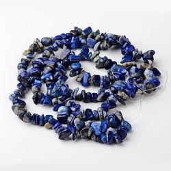 """Lapis-lazuli naturelles brins pierre de perles, puce, 4~10x4~6x2~4mm, trou: 1mm; environ 320 pcs/chapelet, 35.4""""(X-G-R192-13)"""