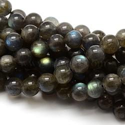 Grade AA Natural Gemstone Labradorite Round Beads Strands, 6mm, Hole: 1mm; about 62pcs/strand, 15.5