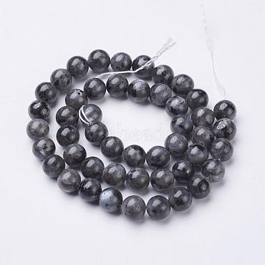 Natural Larvikite/Black Labradorite Beads Strands(X-GSR8mmC128)-3