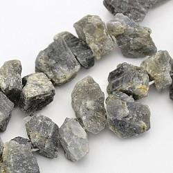 """Pépites de labradorite naturelle brins de perles, 10~20mm, trou: 1 mm; environ 16""""(G-A139-A13)"""
