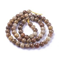 """Chapelets de perles en bois pétrifié naturel, rond, 6mm, trou: 1mm; environ 60~68 pcs/chapelet, 15""""~15.27'' (38.2~38.8 cm)(G-P430-09-B)"""