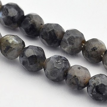 Faceted Round Natural Larvikite/Black Labradorite Beads Strands, 4mm, Hole: 1mm, about 90pcs/strand, 15.35 inches(G-E302-083-4mm)