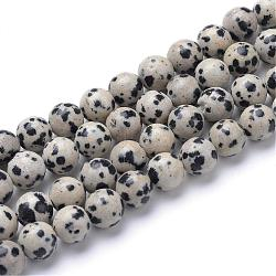 Natural Dalmatian Jasper Bead Strands, Round, 6mm, Hole: 1mm; about 65pcs/strand, 15.7inches(G-R345-6mm-51)
