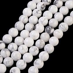 """Chapelets de perles en howlite naturelle, rond, blanc, 8mm, trou: 1mm; environ 24 pcs/chapelet, 7.6""""(TURQ-G091-8mm)"""