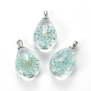 Glass Dried Flower Pendants, with Brass Findings, Oval, Platinum, Turquoise, 30x18x11mm, Hole: 3.5mm(GLAA-K018-E01)