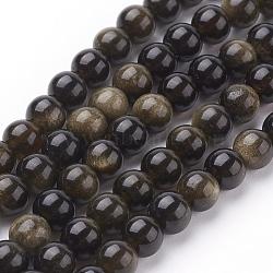 brillance dorée naturelle perles obsidienne brins, arrondir, 6 mm, trou: 1 mm; 31 perle / Chapelet, 8(G-C076-6mm-5)