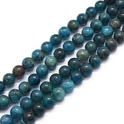 perles naturelles apatite brins, arrondir, 6 mm, trou: 1 mm; environ 64 perle / brin, 15.7 (40 cm)(G-F591-01-6mm)