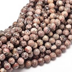 """Brins de perles rondes en jaspe en peau de léopard naturel, 12mm, trou: 1mm; environ 31 pcs/chapelet, 15""""(G-P072-31-12mm)"""