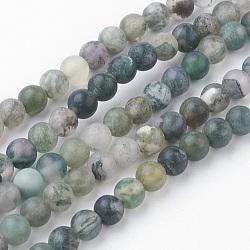 Chapelets de perles en agate mousse naturelle, rond, mat, 4~4.5mm, trou: 1mm; environ 85~90 pcs/chapelet, 14.9'' (38 cm)(G-G735-62F-4mm)