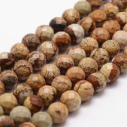 """Chapelets de perles en jaspe avec images naturelles, facette, rond, 8mm, trou: 1mm; environ 44 pcs/chapelet, 14.9""""~15.1""""(G-D840-47-8mm)"""