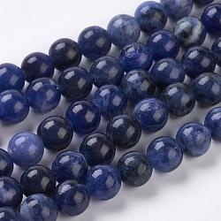 perles naturelles de sodalite, Grand-un, arrondir, 8 mm, trou: 1 mm(X-G-E110-8mm-3)