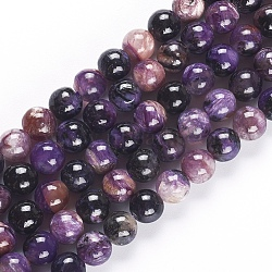 1mm 10 Strands Natural Charoite Round Beads Strands Frosted Dyed 8mm Hole