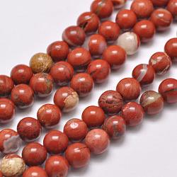 """Chapelets de perles en jaspe rouge naturel, rond, grade AB, rouge, 4mm, trou: 1mm; environ 95 pcs/chapelet, 15.5""""(X-G-F348-02-4mm)"""