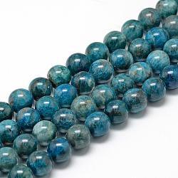 """Chapelets de perles en apatite naturelle, rond, 8~9mm, trou: 1mm; environ 45~48 pcs/chapelet, 15.7""""(G-R446-8mm-11)"""