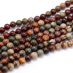 """Chapelets de perle ronde en pierre précieuse naturelle, pierre picasso / jaspe picasso, 10mm, trou: 1mm; environ 38 pcs/chapelet, 15""""(X-G-J303-16-10mm)"""