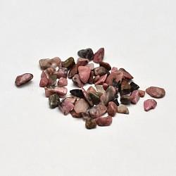 Perles de puce de rhodonite naturelle, pas de trous / non percés, 2~8x2~4 mm; environ 8500 pcs / 500 g(G-O103-05)