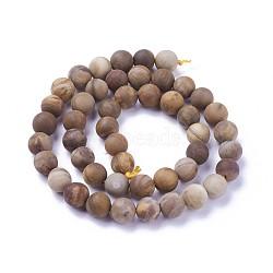 """Chapelets de perles en bois pétrifié naturel, mat, rond, 8mm, trou: 1.2mm; environ 46~47 pcs/chapelet, 14.8''~15.51"""" (37.7~39.4 cm)(G-P430-04-C)"""