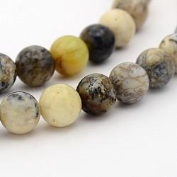 """Agate mousse naturelle chapelets de perles rondes, 6mm, trou: 1mm; environ 98 pcs/chapelet, 15.7""""(G-P070-60-6mm)"""
