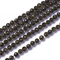 """Chapelets de perles en obsidienne dorée naturelle, facette, rond, 3~3.5x2.5~3mm, trou: 0.3mm; environ 114~141 pcs/chapelet, 15.1~16.4"""" (38.4~41.8 cm)(G-F596-17-3mm)"""