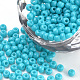 Baking Paint Glass Seed Beads(SEED-Q025-3mm-L09)-1
