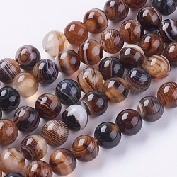 Round Dyed Natural Striped Agate/Banded Agate Beads Strands, Camel, 8mm, Hole: 1mm; about 48pcs/strand, 15.2inches