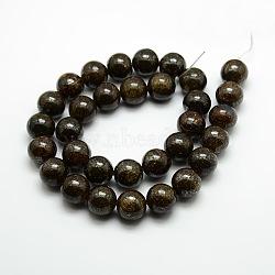 """Rondes bronzite naturelle perles brins, café, 10mm, trou: 1mm; environ 39 pcs/chapelet, 15.3""""(G-P059C-01)"""