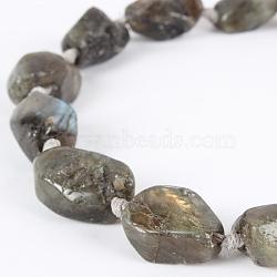 """Labradorite de pierre naturelle nuggest rugueuse chapelets de perles, 22x15x8mm, trou: 2mm; environ 10~17 pcs/chapelet, 16.54""""(G-E218-04)"""