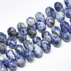 натуральные синие пятна яшмовых нитей, сверху просверленные бусы, граненый, слеза, 11.5~12x8 mm, отверстия: 0.8 mm; о 40 шт / прядь, 8.2(G-S357-C01-06)