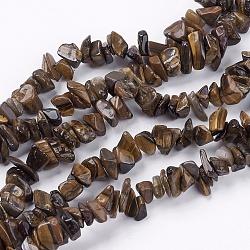 """Tigre de pierre d'oeil chapelets de perles, puce, 4~10x4~6x2~4mm, trou: 1mm; environ 320 pcs/chapelet, 35.4""""(X-G-R192-19)"""