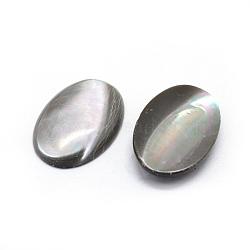 Cabochons de coquille naturelle, ovale, teint, grises , 24x16x3mm(BSHE-E568-O-23)
