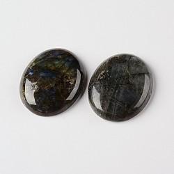 натуральный лабрадорита Драгоценный камень овальной формы кабошонов, класса AB, 25x18x6 mm