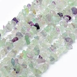 Chapelets de perles en fluorite naturel, puce, 5~8mm, Trou: 1mm; Environ 33'' (84cm)(X-G-P332-27)