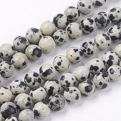 """Dalmatien naturel jaspe brins pierre de perles, rond, 6mm, trou: 1mm; environ 63 pcs/chapelet, 14.9""""(G-R193-14-6mm)"""