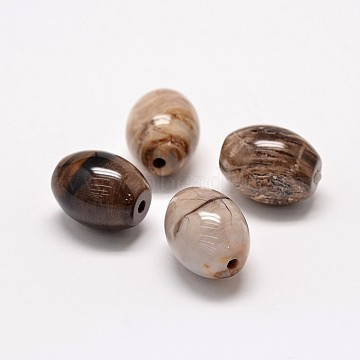 Natural Petrified Wood(Import from America) Beads, Oval, 17~18x14mm, Hole: 2mm(G-P076-34A)