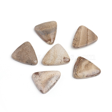 image naturelle perles de jaspe, perles percées, triangle, 28.5x25~25.5x5.5~6 mm, trou: 1 mm(G-I274-23)