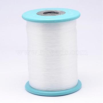 Nylon Wire, Fishing Thread, Clear, 0.3mm, about 2624.67 yards(2400m)/roll(NWIR-N013-01-0.3mm)