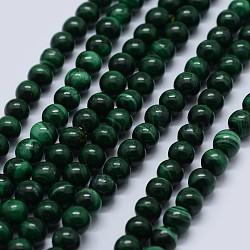 """Chapelets de perles en malachite naturelle, grade AB, rond, 7mm, trou: 0.7mm; environ 56 pcs/chapelet, 15.5"""" (39.5 cm)(G-F571-27AB2-7mm)"""